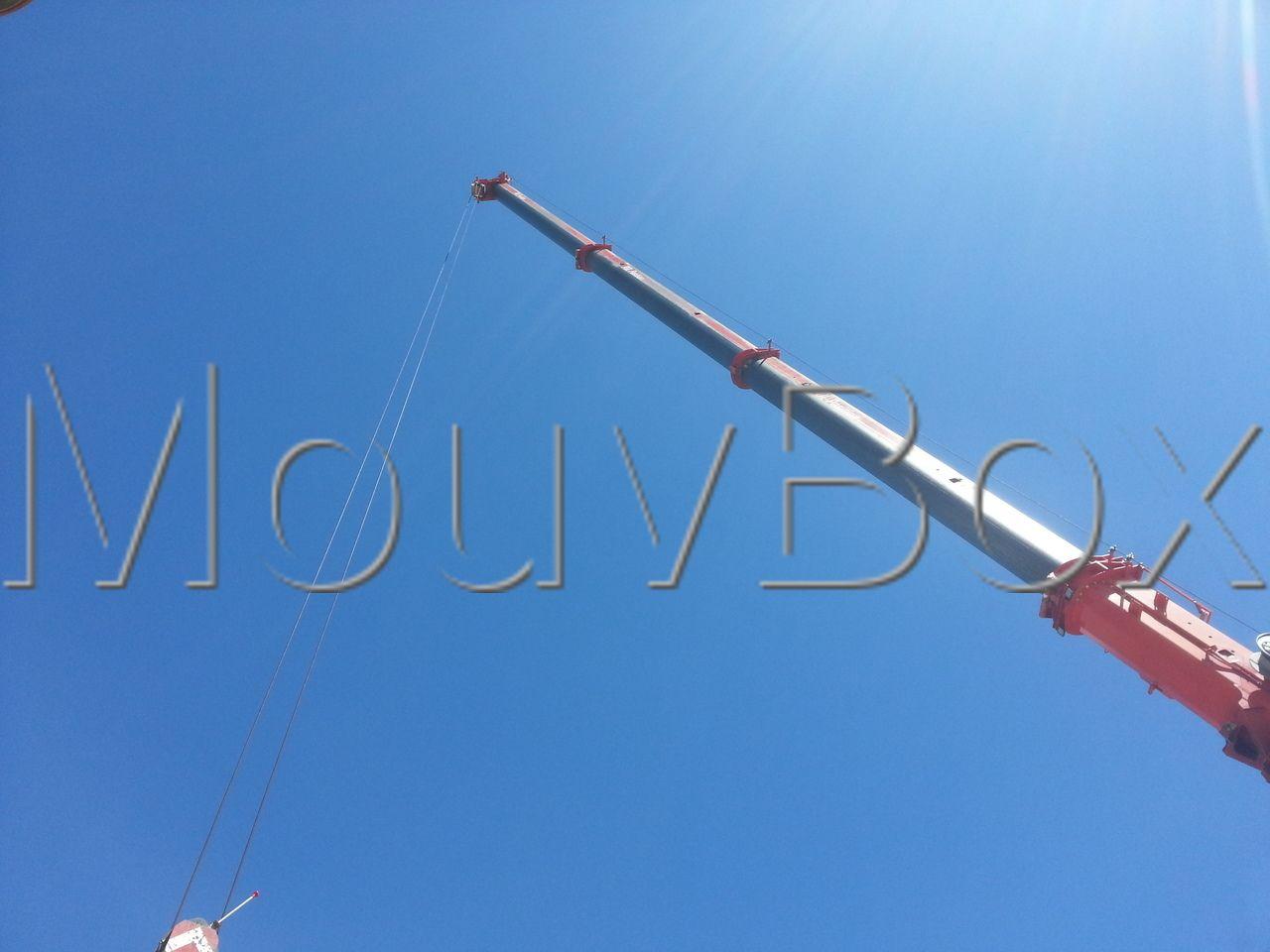 container-conteneur-box-caisson-reefer-40ft-occasion-vente-mouvbox (6)